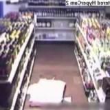 I ladri più stupidi al mondo!!! DA VEDERE